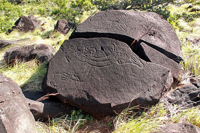 Vulkan Orosi Petroglyphen Pedregal (Foto: Biologische Station Maritza Guanacaste)