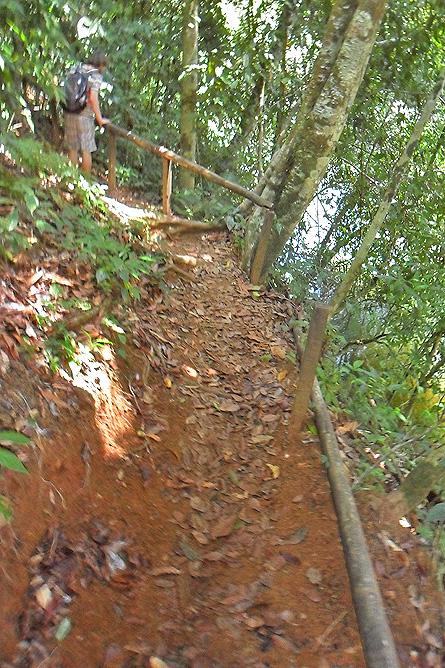 Corcovado Nationalpark – San Pedrillo Wanderweg zum Wasserfall