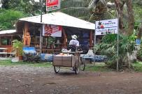 Fahrradfahren-Südkaribik_Fahrrad-als-Arbeitshilfe_Foto-Christine_15-11-2017