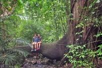Nicoya Cabo Blanco Naturreservat - Regenwald