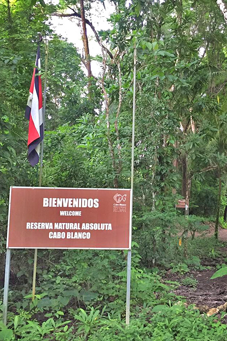 Nicoya Cabo Blanco Naturreservat – Strand