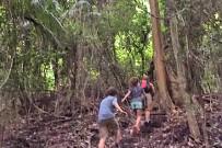 Nicoya_Cabo Blanco Naturreservat_Wanderweg