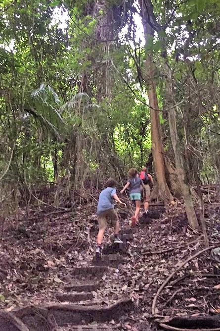 Nicoya Cabo Blanco Naturreservat – Wanderweg