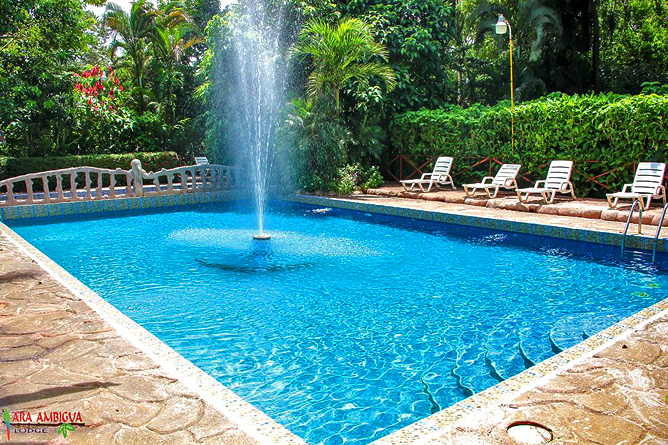Ara Ambigua Pool