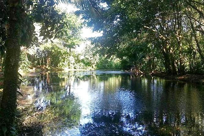 Ara Ambigua Sarapiqui Fluss