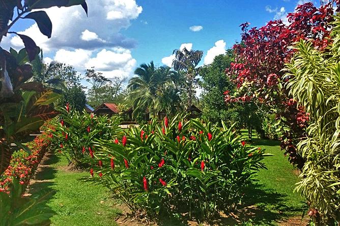 Cabanitas Arenal Gartenanlage