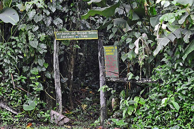 Chilamate Natur Wanderwege privates Reservat