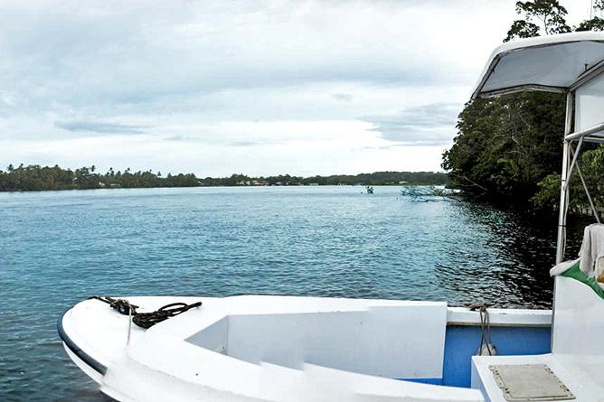Pachira Lodge – Bootstour am Tortuguerokanal