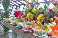 Pachira Lodge_Restaurant_Buffet_30-11-2017
