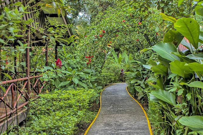 Pachira Lodge – Spazierwege durch die Anlage