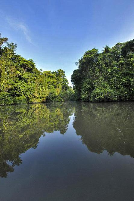 Pachira Lodge – Tortuguero Kanal Seitenarme