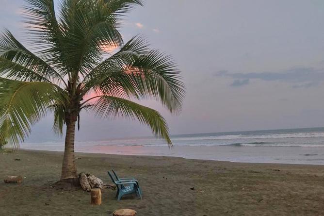 Portasol Rainforest Ocean View Living Playa Matapalo