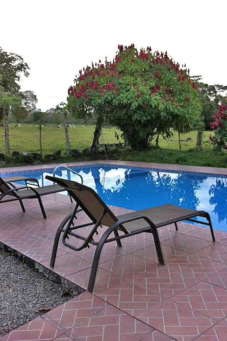 Villas Vista Arenal Pool