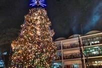 Weihnachten Costa Rica Weihnachtsbaum vor dem Kinderkrankenhaus San José