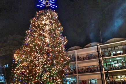 Weihnachten Costa Rica_Weihnachtsbaum vor dem Kinder Krankenhaus San Jose_Christine 12-2017