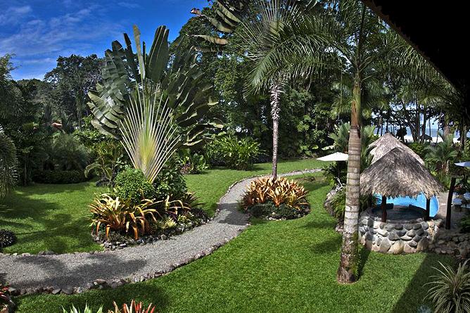 Banana Azul Gartenanlage