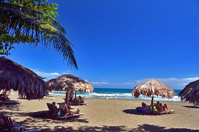 Banana Azul Playa Negra
