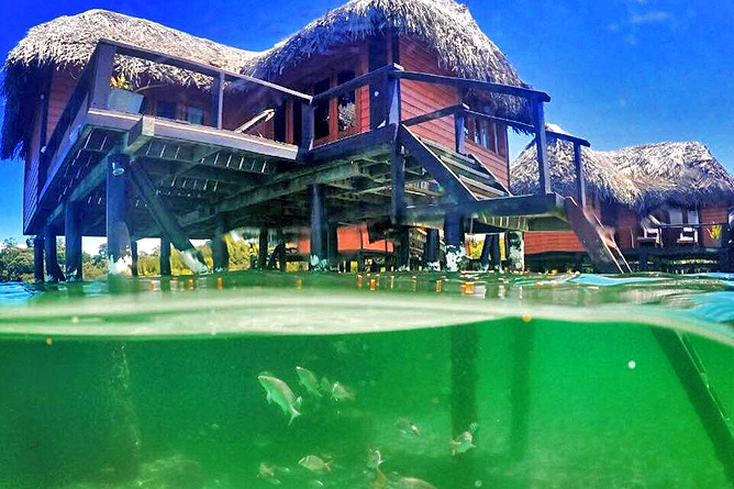 Bocas del Toro Bastimiento Hotel Eclipse