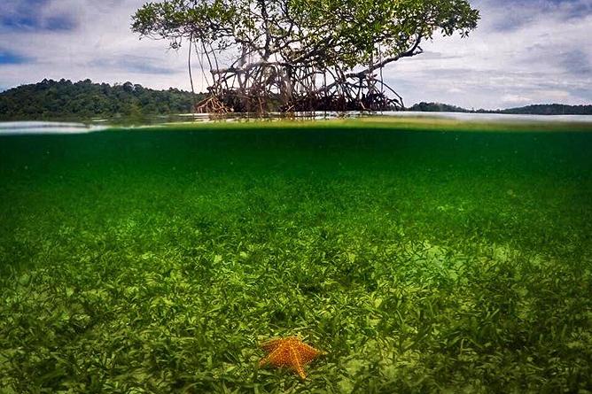 Bocas del Toro San Cristobal
