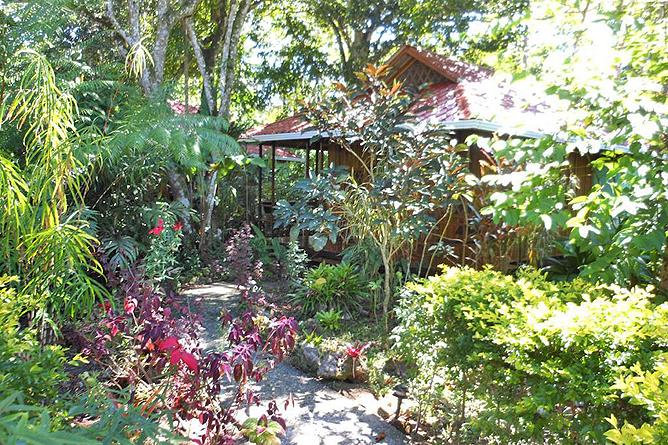 Coral Hill Bungalow Anlage Garten