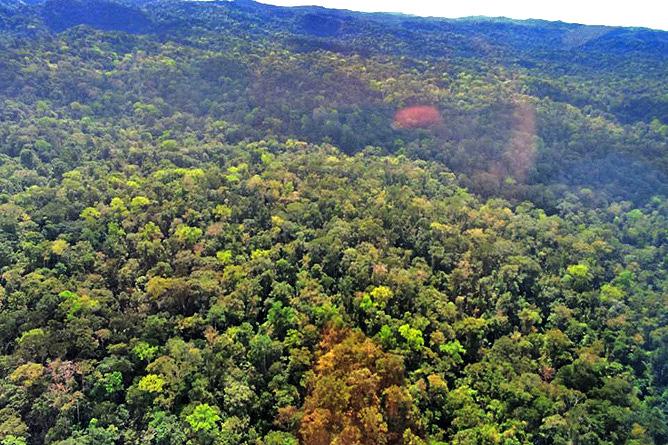 Goldwaschen Corcovado Nationalpark Dschungel
