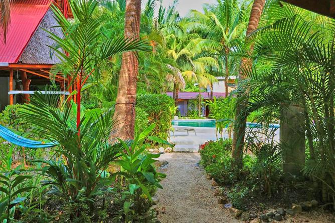 Living Nosara Garten mit Swimming Pool