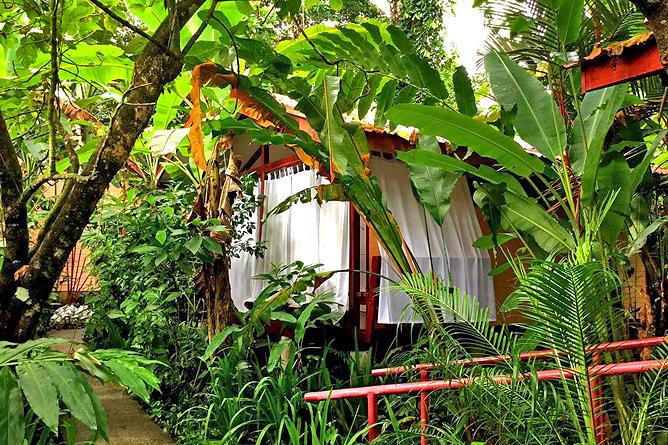 Namuwoki Bungalow Regenwald