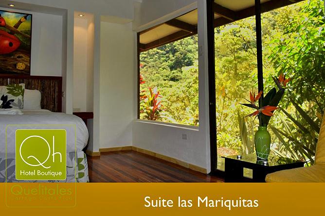 Quelitales Suite