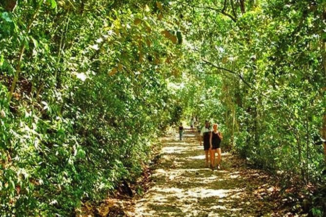 San Bada Nationalpark Manuel Antonio Wanderweg