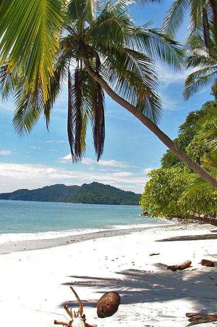 Vista Las Islas Playa Organo
