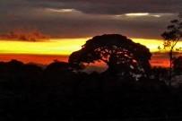 touren-monteverde-micha-cabure1