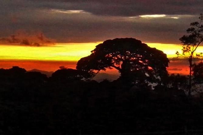 Touren Monteverde Cabure