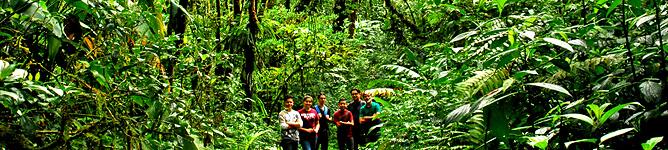 Touren Monteverde Santa Elena