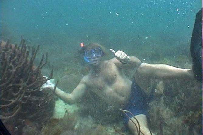 Cahuita Nationalpark Schnorcheln