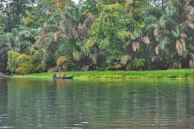 Tortuguero Bootstour durch die Kanäle