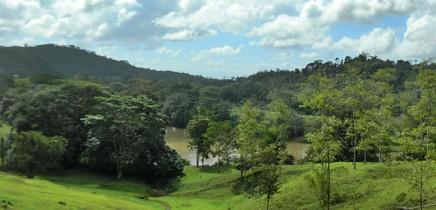 Tukan_Lebenswald tropische Regenwaelder_Christine 12-2014