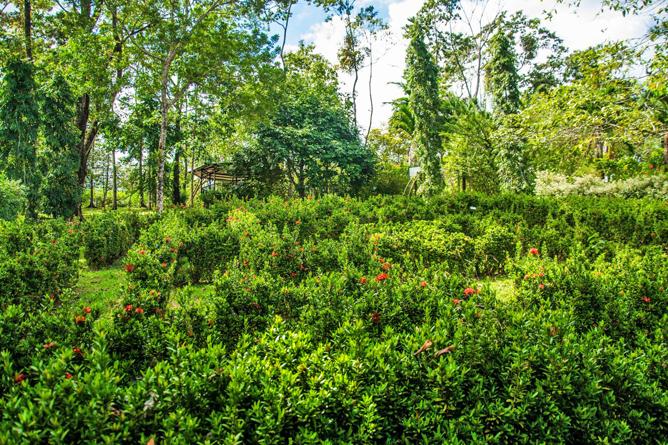 Josipek Garten Labyrinth