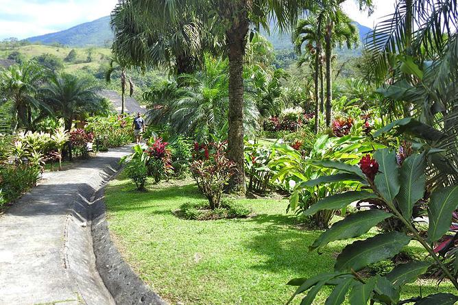 Lavas Tacotal Einfahrt und Garten