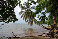 Cahuita_Nationalpark_Bucht_Foto Iris_2012