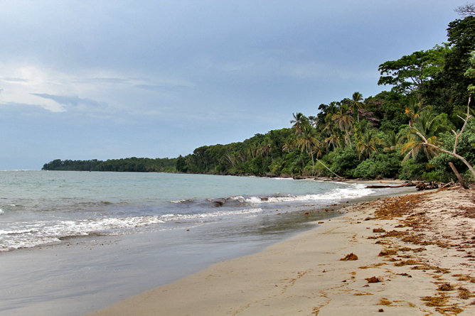 Cahuita Nationalpark Strand