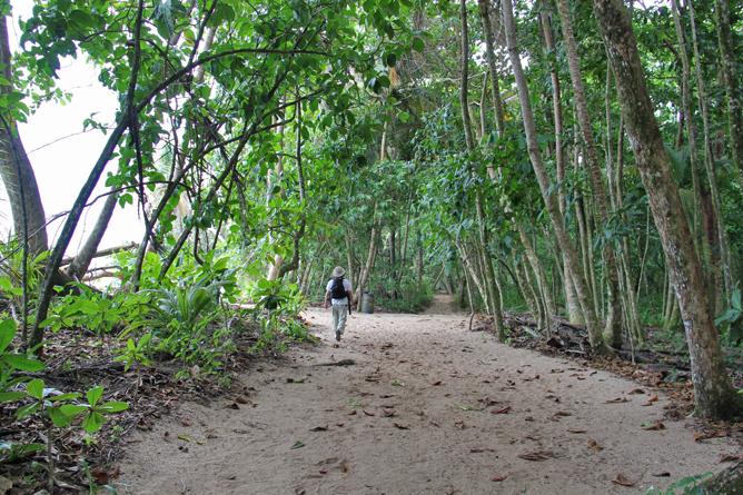 Cahuita Naturwanderweg