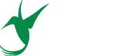 colibri--