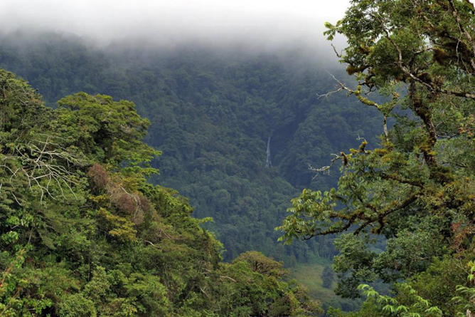 Monteverde Ecolodge Monteverde Nebelwald