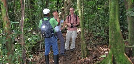 Maquenque Wildarten Refugium_Wandern mit Guide durchs Refugium_Foto Micha 09-2018
