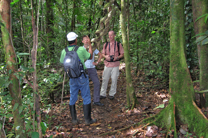 Maquenque Wildarten Refugium Wandern mit Guide durchs Refugium