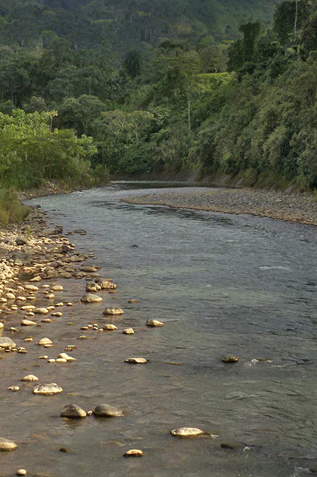 Maro Wandertour Savegre Fluss