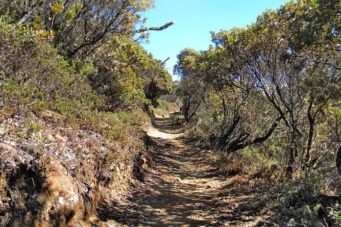 El Pelicano Chirripó Nationalpark Beginn der Wanderung