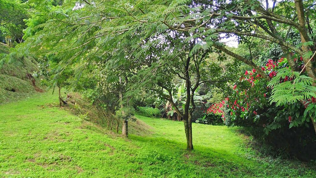 Pibi Boreal Grundstück