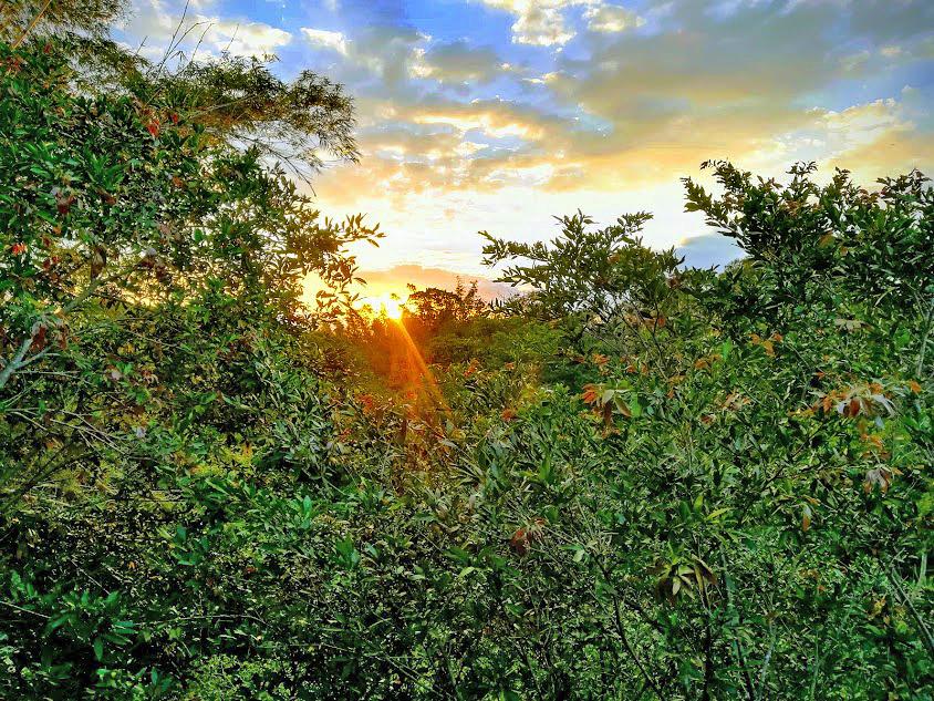 Pibi Boreal Sonnenuntergang