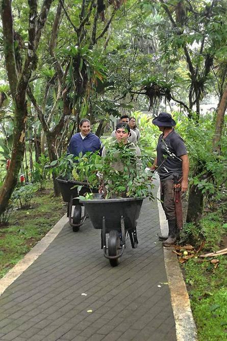 Sonati Gartengestaltung und Baumsetzen Jugendliche